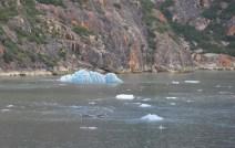 What an interesting iceberg!