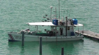 Another fishing boat. I'm curious to know what the flags are for. We've seen them on a number of other boats as well.