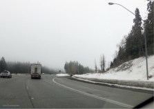 Suddenly, what is this white stuff by the side of the road?!