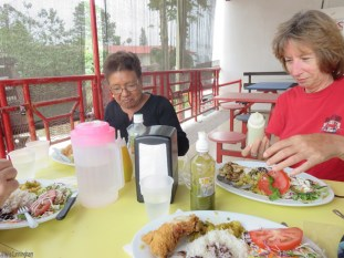 We stopped for a very good lunch - beef, pork, or chicken with rice, beans, a chayote salsa, and salad. $4/apiece.