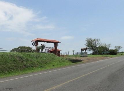 This farm belongs to the Ortega family (President)
