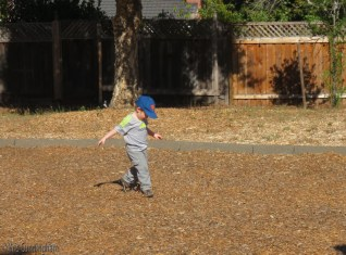 I am not supposed to kick dirt, or wood chips, or gravel, or anything but it is so irresistible.