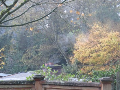 It was a chilly, gray morning and maybe the neighbors had a fire in the fireplace.