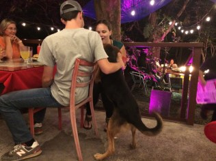 He also loved visiting any diner who would pet him.