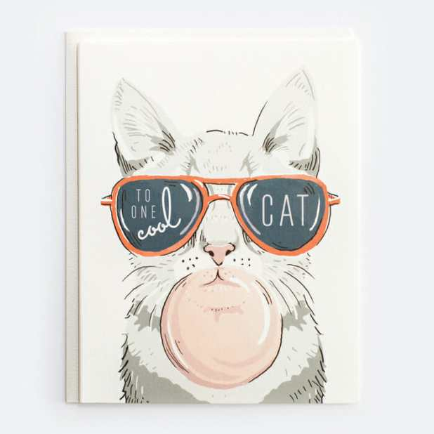 one-cool-cat