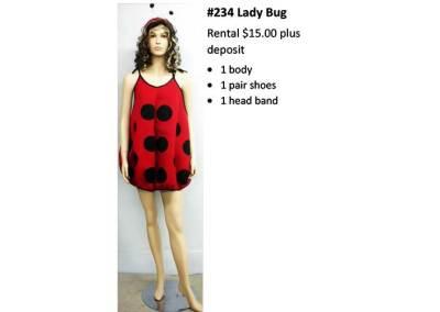 234 Lady Bug