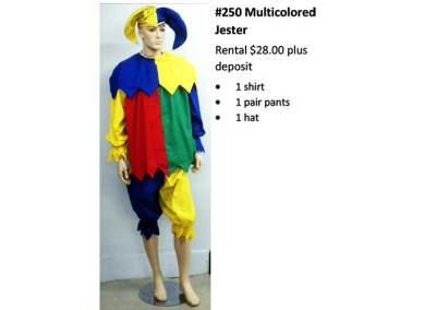 250 Multicolored Jester