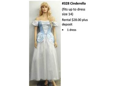 328 Cinderella (fits up to dress size 14)