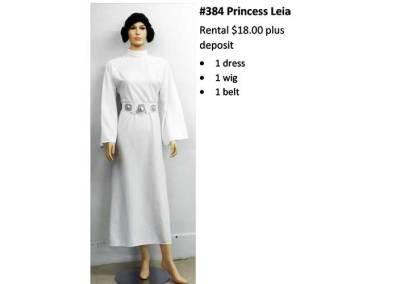 384 Princess Leia