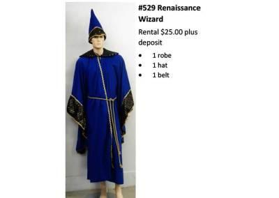 529 Renaissance Wizard