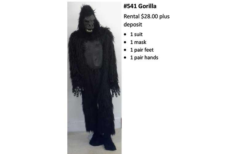 541 Gorilla