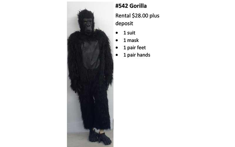 542 Gorilla