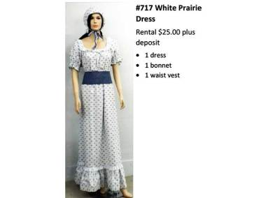 717 White Prairie Dress