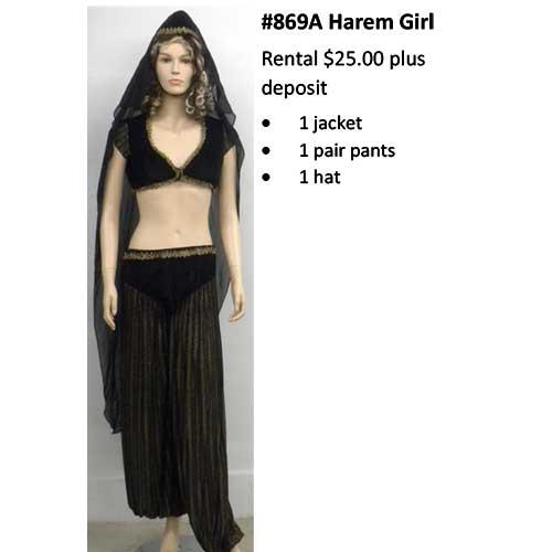 869A Harem Girl