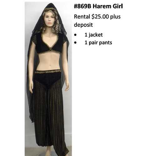 869B Harem Girl