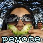 Peyote Trip Overview: San Luis Potosí – Episode 117