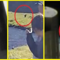 GHOST, BIGFOOT and UFO final Proof?? Pictures and reports...