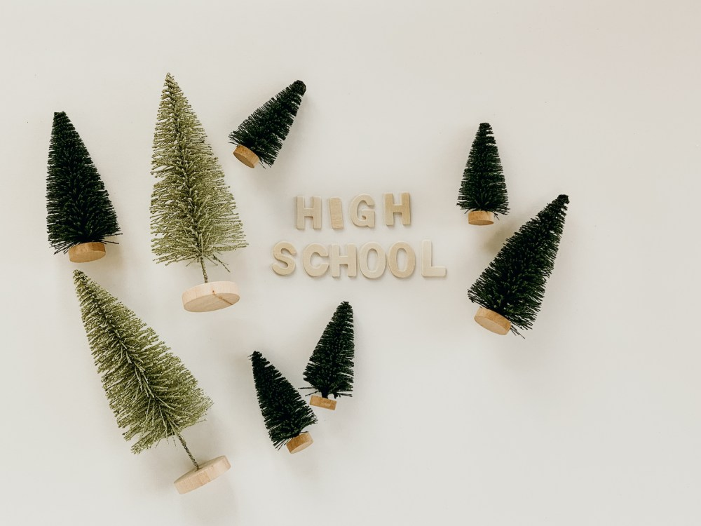 Parent Cue Gift Guide | High School