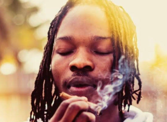 Abuja Concert: Your Airline is Useless, Marley Replies Jet Operator