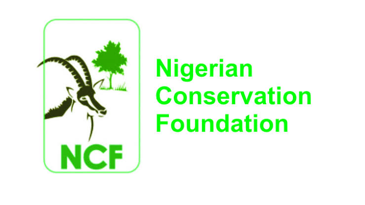 NCF Premieres Documentary on African Vultures