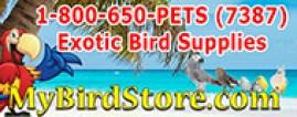 My Bird Store