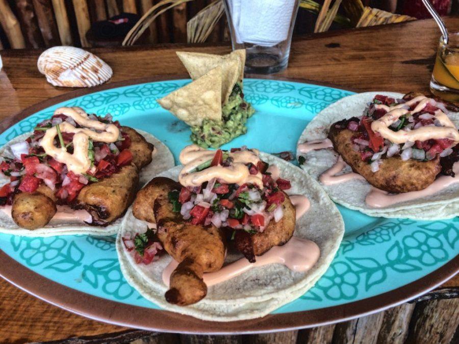 fish tacos holbox mexico