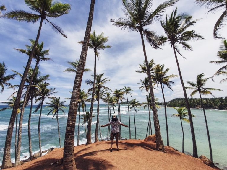 coconut hill mirissa sri lanka