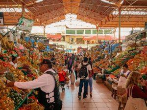 the backpackers guide to vilcabamba ecuador