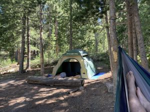 west magnolia campsite colorado