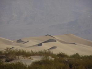 Dunes of Mars?