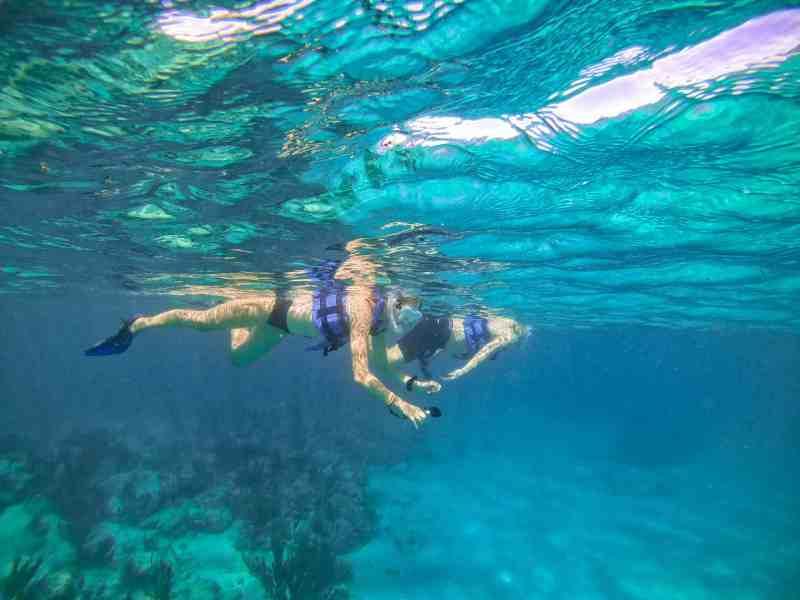 Alicia Recording Sea Turtles on Adventure Tour