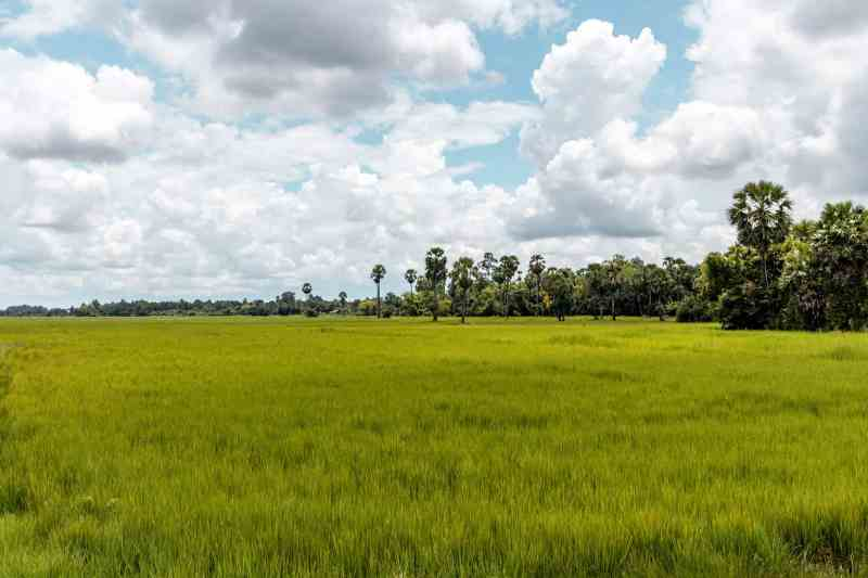 Countryside Tour in Siem Reap