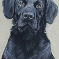 Pet Dog Sofa Chairs Argos Pastel Portraits By Nina Squire, The Artist
