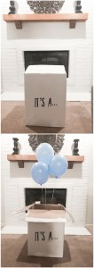Gender Reveal! It's a... BOY!