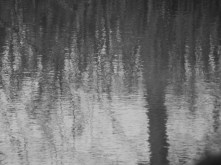 In The Ripples