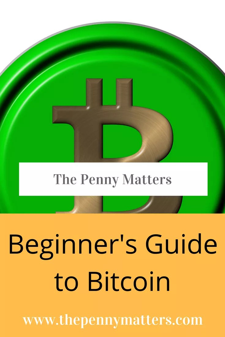 Beginner's Guide to Bitcoin 1