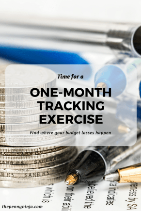 One-month Financial Tracking Exercise