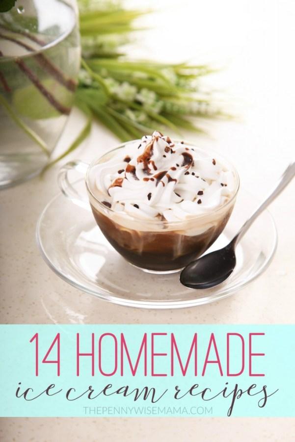 14 Homemade Ice Cream Recipes