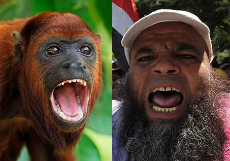 Islamic howling monkeys