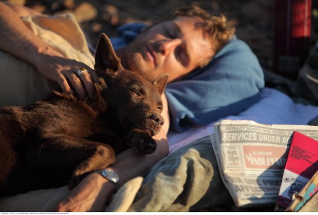 Film Review: GFF 2012 – Red Dog