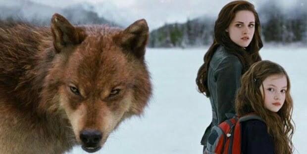 The Twilight Saga:Breaking Dawn Part 2 Review