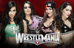wwe-wrestlemania31-divas