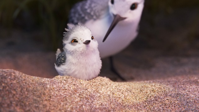 Cute Overlord! First Look At Piper New Disney Pixar Short
