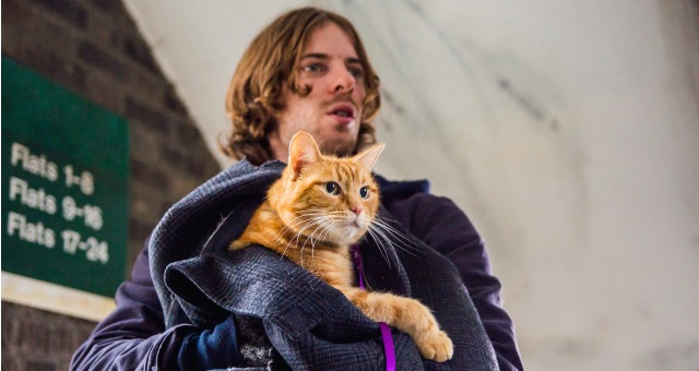 Purr At A Street Cat Named Bob New Second Trailer