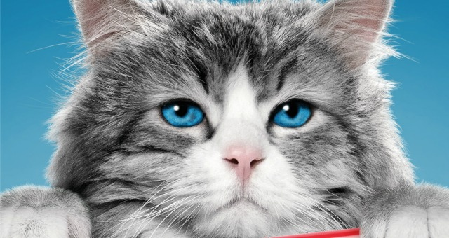 Win Nine Lives Starring Kevin Spacey On Blu-ray