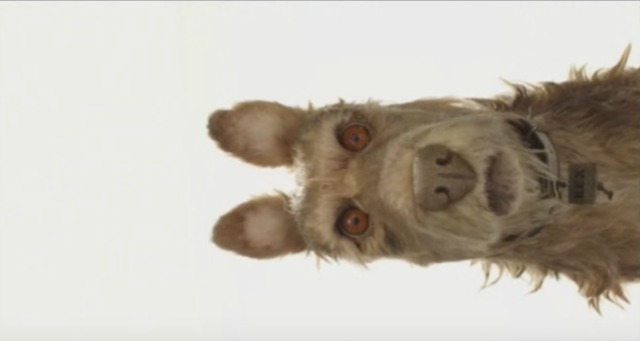 Wes Anderson Announces Animation Isle Of Dogs His Next Project