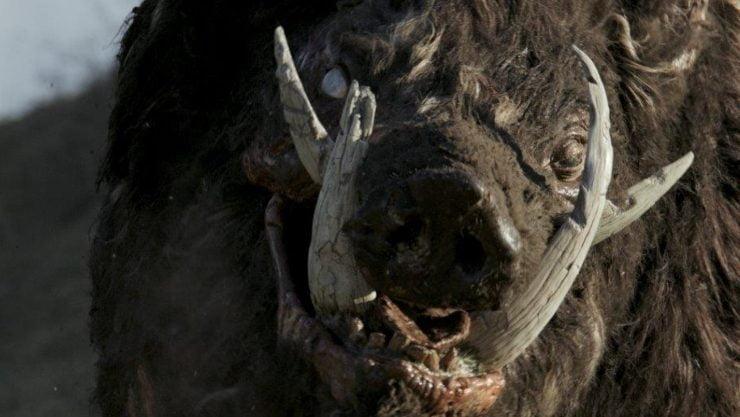 Film Review – Boar (2018)