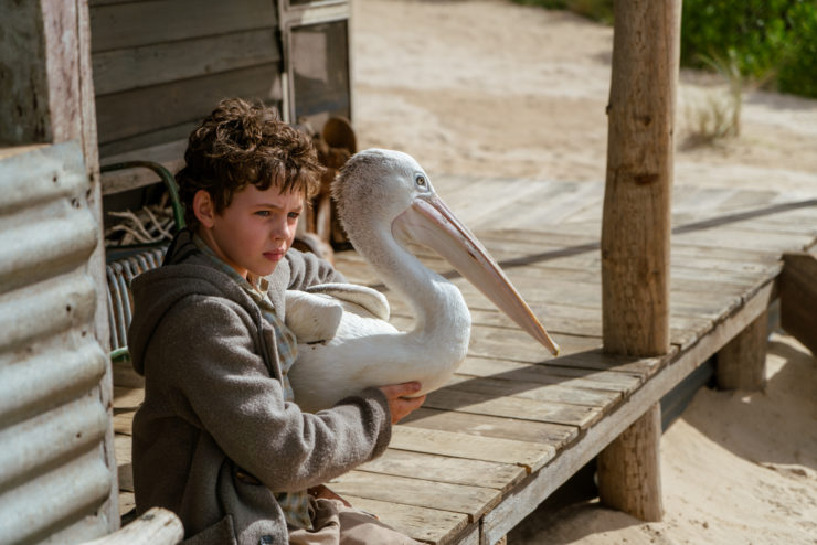 Digital Review – Storm Boy (2020)