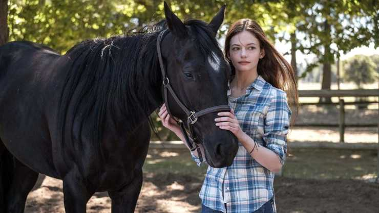 Disney+ Review – Black Beauty (2020)