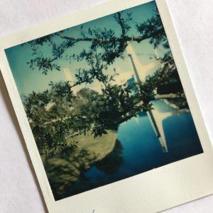 Polaroid-Cleary